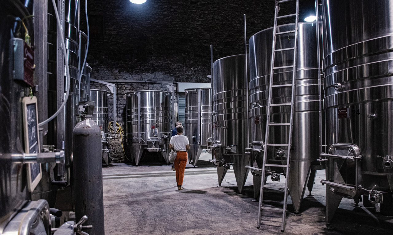 Pic SL Domaine de Cazeneuve visite jeanne de dos